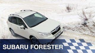 Тест-драйв Subaru Forester(Подпишитесь на канал Life | Новости - https://goo.gl/7MElrH Смотрите также: Проишествия - https://www.youtube.com/playlist?list=PLTtSQdzf0736n6yAh4o., 2016-03-05T08:03:23.000Z)