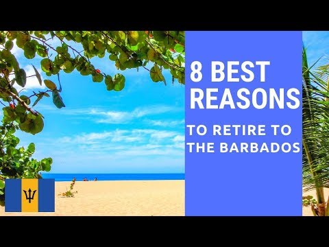 8 Best reasons