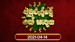 new-year-programme-4
