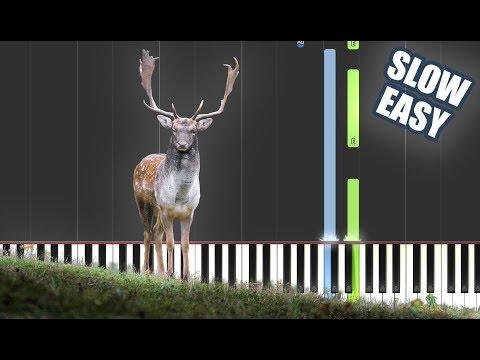 As The Deer Keyboard chords by Hillsongs - Worship Chords