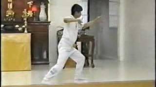 Wang Shu Jin Tai Chi form (1 of 2)