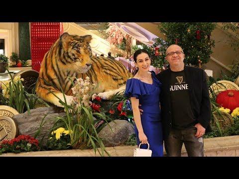 Фото с Тигром - Лас Вегас - Tao Venetian Las Vegas - Эпизод 10 - Семейный Влог - Эгине - Heghineh