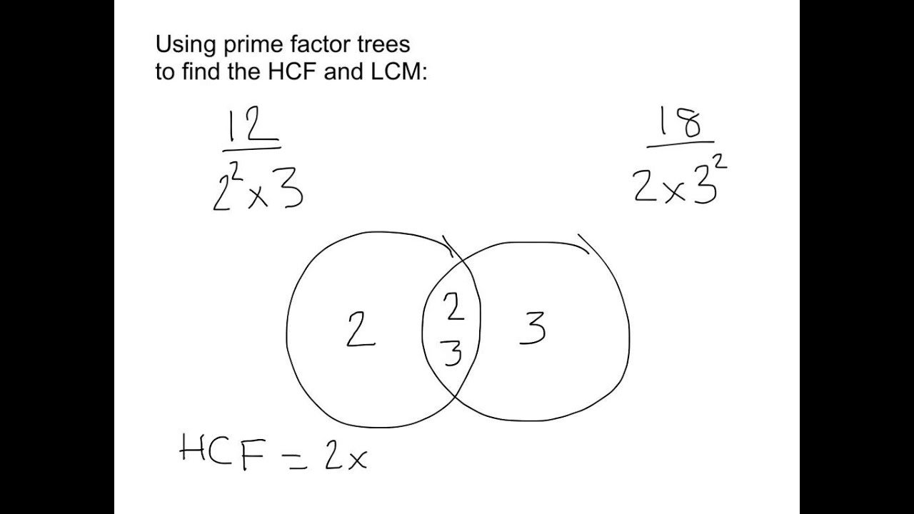 worksheet Prime Factorization Tree Worksheets hcf and lcm using prime factor trees youtube