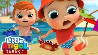 Can Bebek Plajda, Zıt Kavramlar Şarkısı | Eğlenceli Ve Öğretici Çocuk Şarkıları