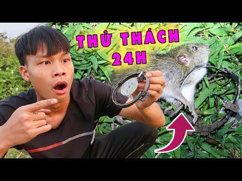 Thử thách 24h săn chuột kiếm tiền làm từ thiện   Bẫy chuột đồng - Lạ Vlog