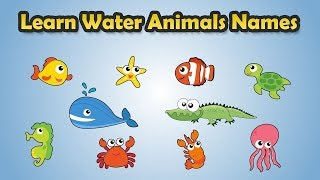 Learn Sea Animals | Learn Sea Animals for Kids | Ocean animal