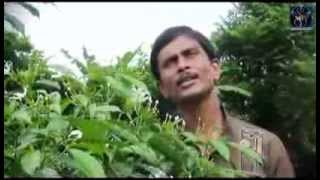 Tui Ki Aamar Putul Putul ..... cover song sang by Nitai Adhikari