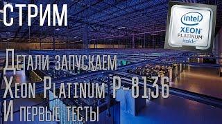 Воскресный стрим: детали запуска Xeon Platinum P-8136 и первые тесты..