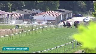 Vidéo de la course PMU PREMIO GRUPO CARRUS