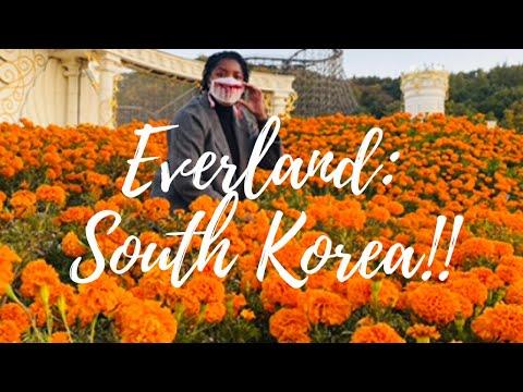 LET'S GO TO EVERLAND!!    SOUTH KOREA    EVERLAND AT A GLANCE