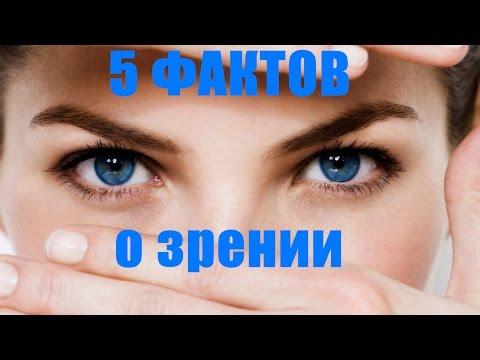 5 ФАКТОВ О ЗРЕНИИ