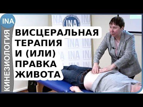 Висцеральная терапия и(или) правка живота. Прикладная кинезиология. Л.Ф.Васильева