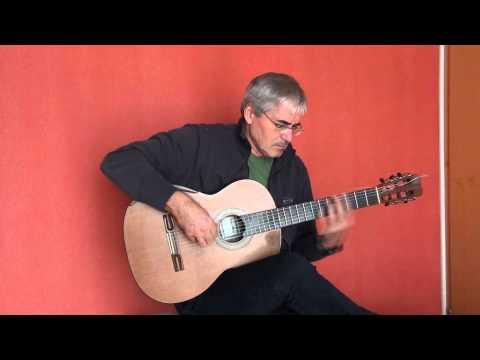 Biene Maja guitar cover