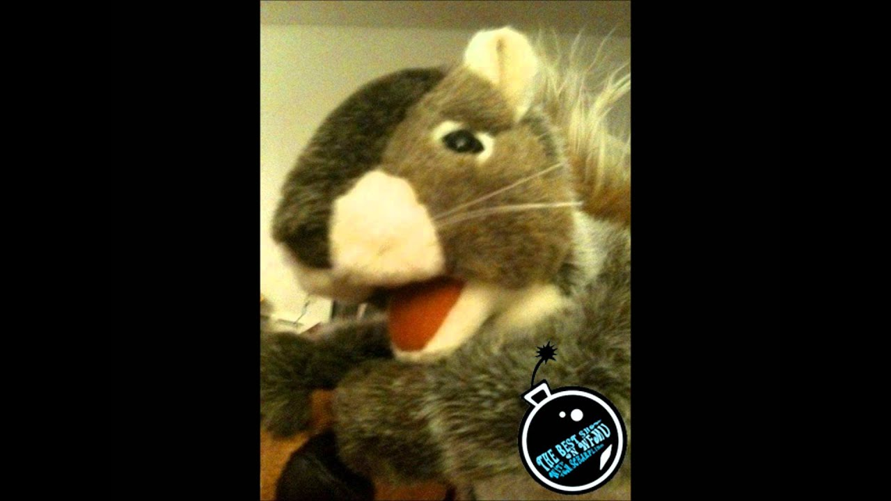 Gary the Squirrel's second appearance on the Best Show - January 31, 2012