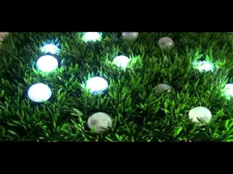 Fairy Berries In The Grass Led Lights With Twinkly Fairy