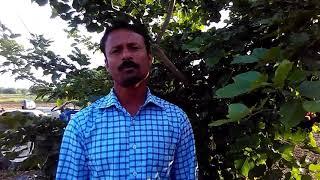 Video Janavaranchya jakhamevar kide padalyavar upay जनावरांच्या जखमेवर किडे पडुनये म्हणून download MP3, 3GP, MP4, WEBM, AVI, FLV Agustus 2018