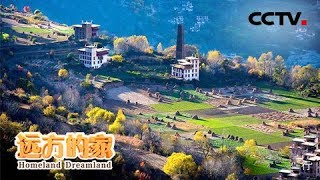 《远方的家》 20190709 长江行(7) 与水为邻 重拾梦想| CCTV中文国际