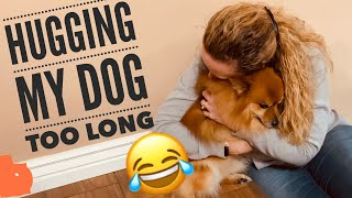 Hugging my dog too long (funny commentary)