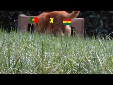 BRAZIL 2014 : PORTUGAL - GHANA 2-1