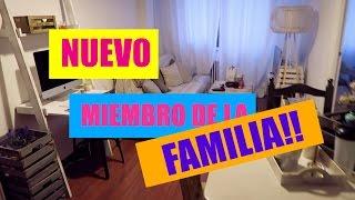 NUEVO MIEMBRO DE LA FAMILIA! NUEVA DECORACION DE MI CASA! | Rebeca Terán