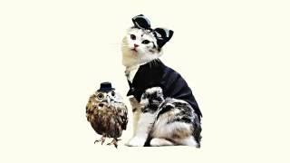 これを聴けばあなたの猫も歌いだすかも?! 誰もが知るクラシックの名曲...