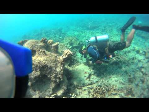 グアムでダイビング Diving at GUAM,Apra Havor SONY HDR AS-15 #2