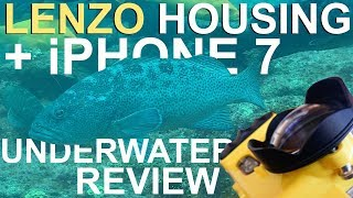 iPhone 7 underwater review with Lenzo housing