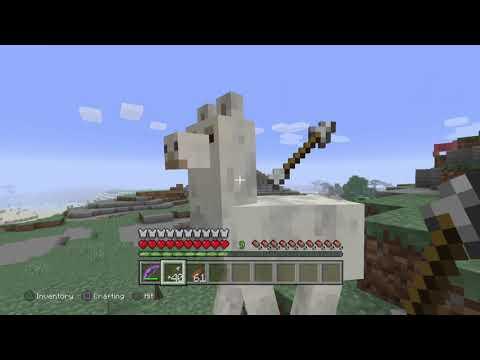 Minecraft: PlayStation®4 Edition_20190520162352