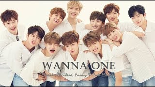 PART 343: Kpop Mistake & Accident [WANNA ONE]