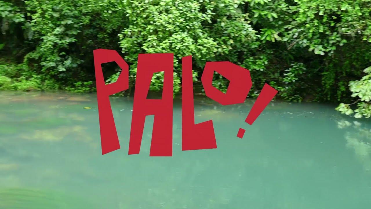 "Download PALO! ""Al Monte"" (Lyrics/Letra) • Musica Cubana Salsa Jazz Funk"