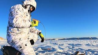 РАДИ ЭТИХ ПОКЛЕВОК Я ПОЕХАЛ НА РЫБАЛКУ Зимняя рыбалка на балансир 2020 2021