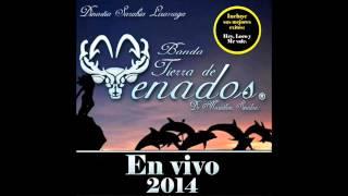Banda Tierra De Venados-El Sinaloense, Marinero de Mazatlán, El Coyotito.....(Disco En Vivo) 2014