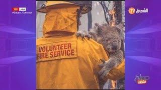 شاهد بالصور ... موت ملايين الحيوانات بسبب موجة حرائق  أستراليا 😱😱