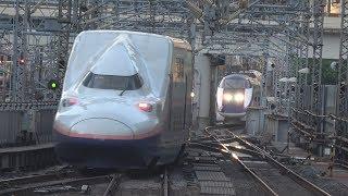 東京駅でダイヤの乱れで入線待機する新幹線を撮ってみた thumbnail