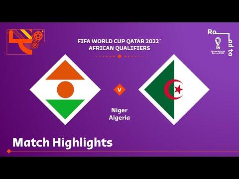 Niger Algeria Goals And Highlights