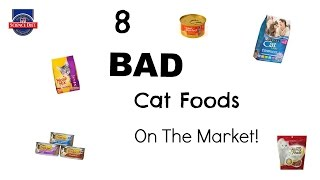 8 Bad Cat Foods On The Market