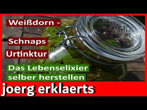Weißdorn-Schnaps / Tinktur selber machen...Tutorial.....Vol.105