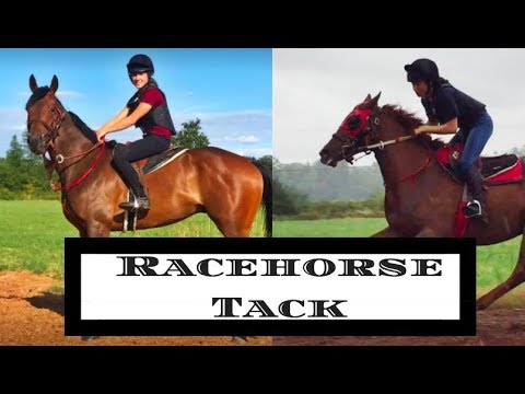 Racehorse Equipment| Tack Up W/ Me