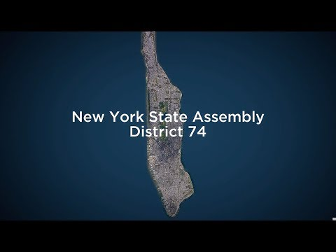 Race To Represent 2018: A Profile of NYC's State Assembly District 74