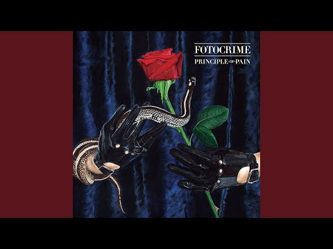 The Rose and the Thorn mp3