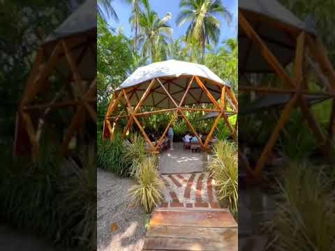 Esto no es Tulum - Jardín secreto - Acapulco