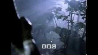 INSTINTO DE SUPERVIVENCIA HUMANA 1 / 5 BBC DOCUMENTALES