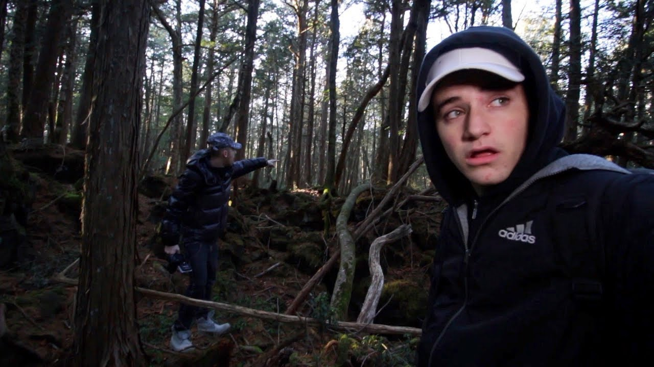 We flew to Japan to explore the Aokigahara  Forest (Warning: Extremely Scary)