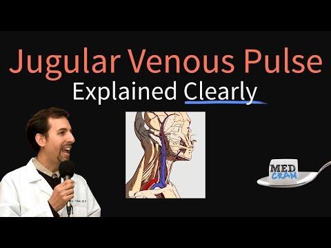 Jugular Venous Pulse (JVP) Explained Clearly - Evaluation, Waveforms, Interpretation