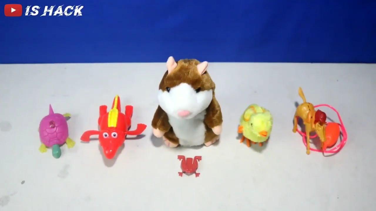 Review Mainan Hamster Bisa Niruin Suara Manusia | Hamster Bisa Niruin Suara Manusia