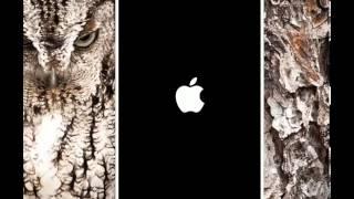 trucos gta san andreas Iphone Ipod Ipad