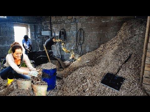 Измельчитель древесины для арболита своими руками