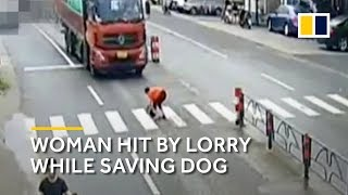 Chinese woman trying to save dog gets hit by lorry