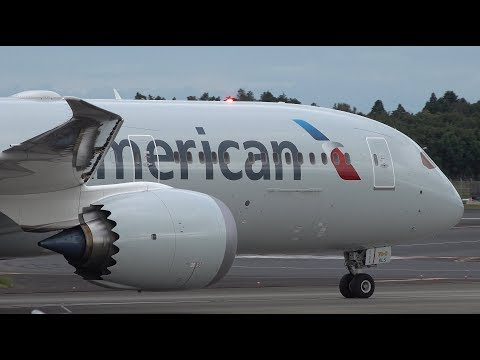 American Airlines Boeing 787-9 N835AN Landing At NRT 34R
