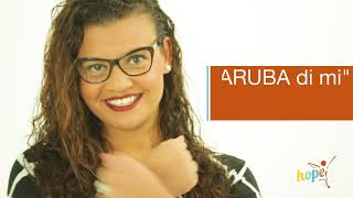 Elections 2017: ARUBA Express your Voice!